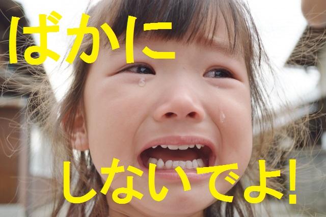f:id:makocho0828:20170102195631j:plain